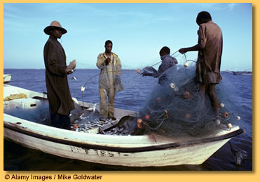 Workers at a fish factory in Senegal. Picture: McKinsey.com