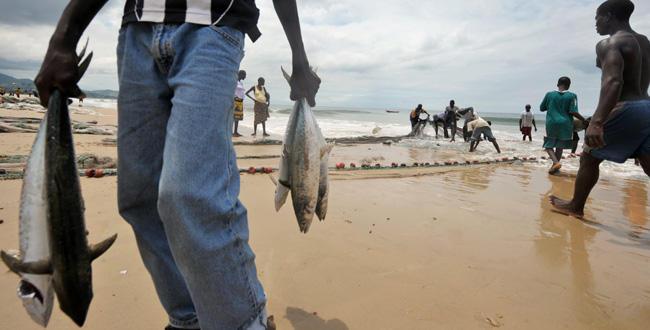 les pêcheurs locaux du sierra leone