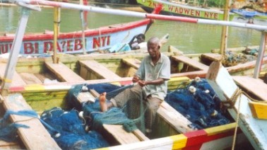 Ghana's fishing industry faces imminent collapse, study reveals