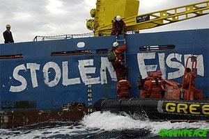 Illustration of illegal fishing