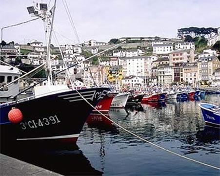Fishing fleet at port (Photo: MARM)