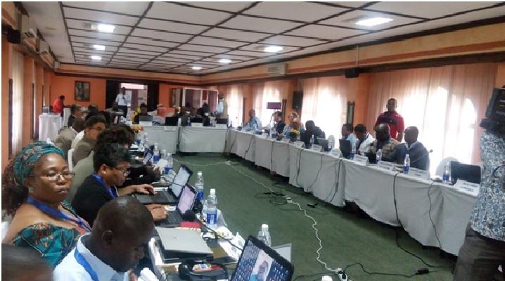 Les experts de l'UA ont appelé à la professionnalisation du secteur de la pêche pour qu'il puisse contribuer efficacement au développement économique des Etats africains. (photo/ M.A)