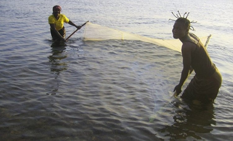 Malawi fishing with mosquito net1