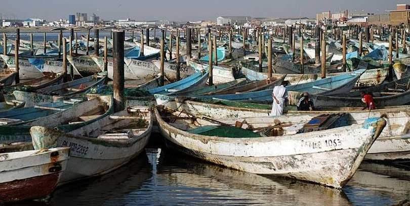 fishing boats docked