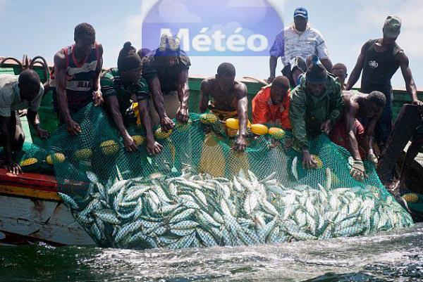 illustration: pêcheurs artisanaux dans une barque, tirant un filet rempli de poissons de l'eau