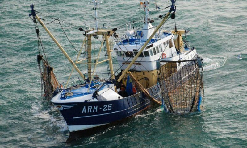 Pêche illicite: La marine nationale arraisonne deux bateaux nigérians au large de Bakassi
