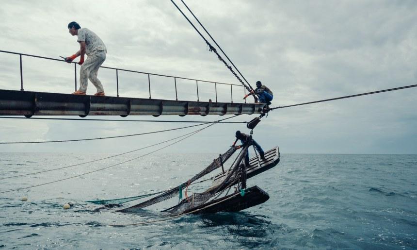 Chinese Fishing West Africa at Sea Yuyang