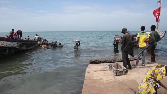 fishing scene in Senegal