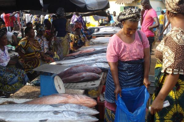 Senegal fish market scene - Photo by Dyhia Belhabib
