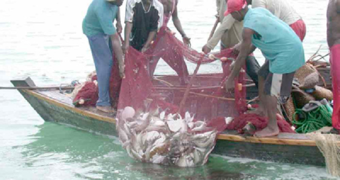 Ghana - The benefit of fish products are great because of their high consumption rate among Ghanaians