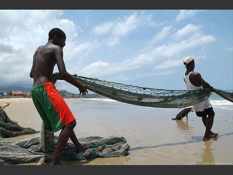 fishermen pulling a net