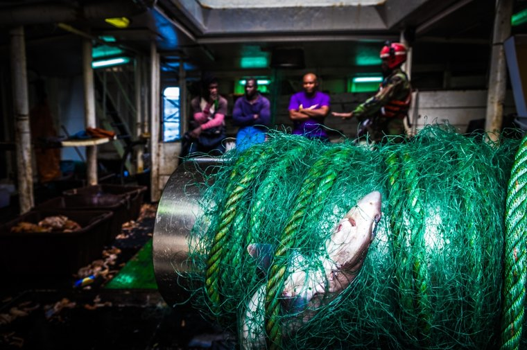 F/V was using gillnets prohibited under their licensing conditions. Photo Melissa Romao/Sea Shepherd.