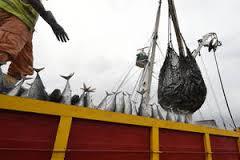 Greenpeace dénonce l'inaction contre la pêche illégale en Afrique de l'Ouest - ©(DR)