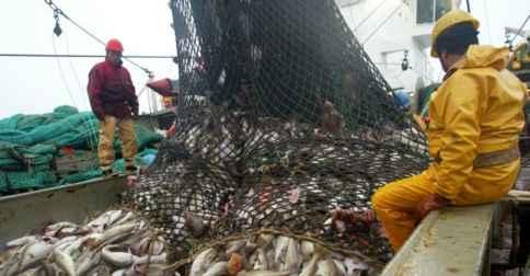Négociations sur la Pêche : Le Sénégal veut la suppression des subventions à L'OMC