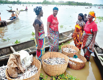 Nigeria fish production farming