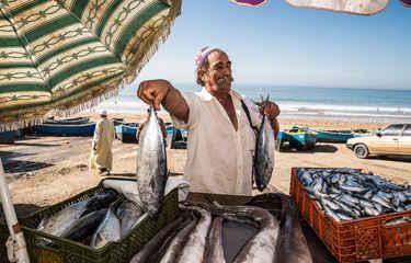morocco fish