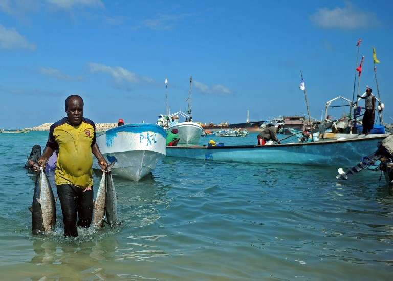 Illegal fishing, piracy and hostage-taking haunt the vast bay lying off West Africa. Image: Mohamed ABDIWAHAB / AFP