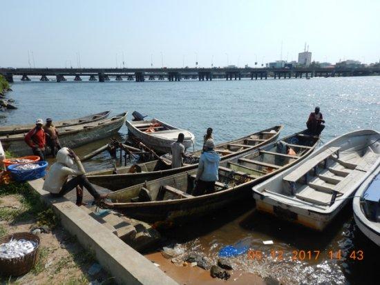 A Cotonou, les aventures de pêche en mer sont de plus en plus infructueuses