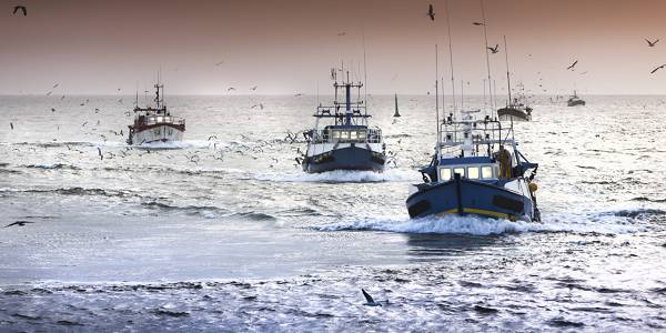 Fishing vessels record zero catch