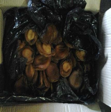 Abalone weighing almost 600 kilogrammes was discovered concealed in sheen wrap | ANA