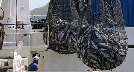 ghana fishers
