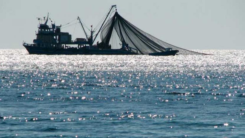 Morocco - fishing