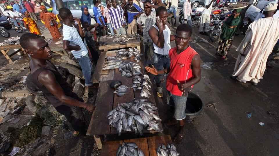 Nigeria fishmarket