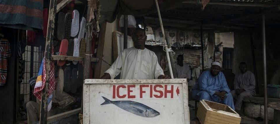 La malédiction Boko Haram continue de frapper la pêche, principale richesse du lac Tchad © AFP/Archives / STEFAN HEUNIS