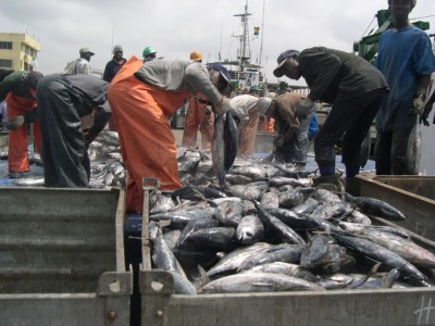 Ghana - Fishing loading scene at Tema Port - Photo: FCWC Secretariat