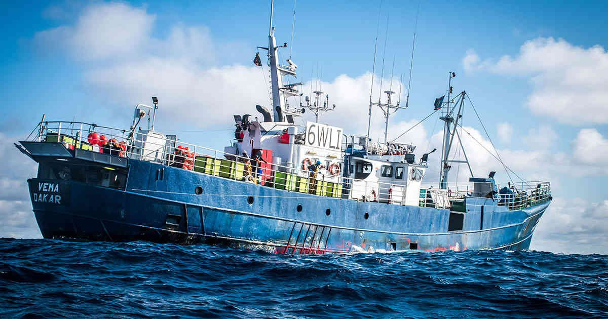 The fishing vessel Vema, arrested for shark finning. Sea Shepherd Global