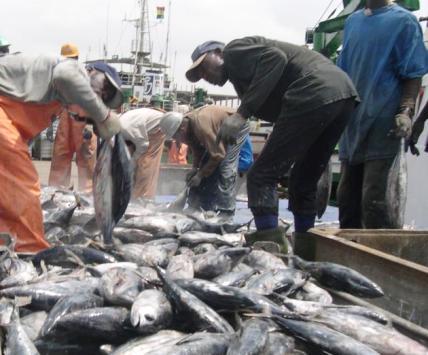 ghana fishhing harbor