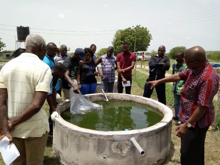 Ghana launches online aquaculture course