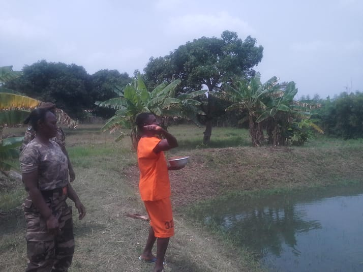 Ghana - James camp prison - Inmate working at the tilapia pond