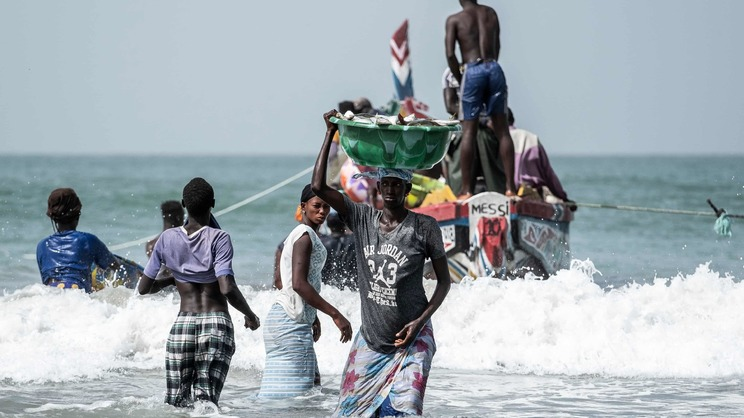 A woman brings in a bucket of fish in Gunjur village, the Gambia. (Xaume Olleros, The Guardian)