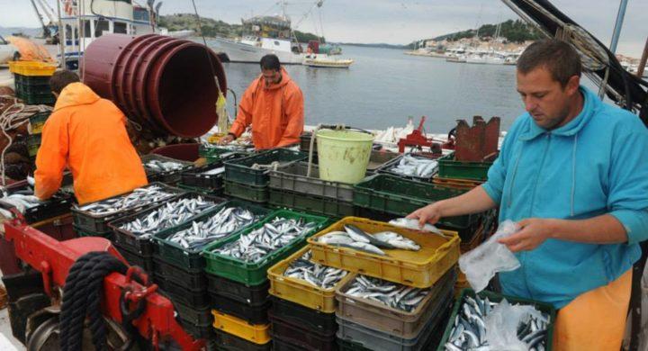 Morocco fishery improvement - Photo credit: Morocco World News