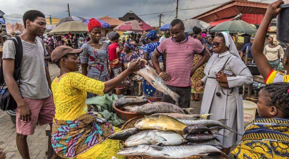 Nigeria fish market - Credit: Andrew Esiebo