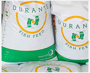 Nigeria Fish feed 5