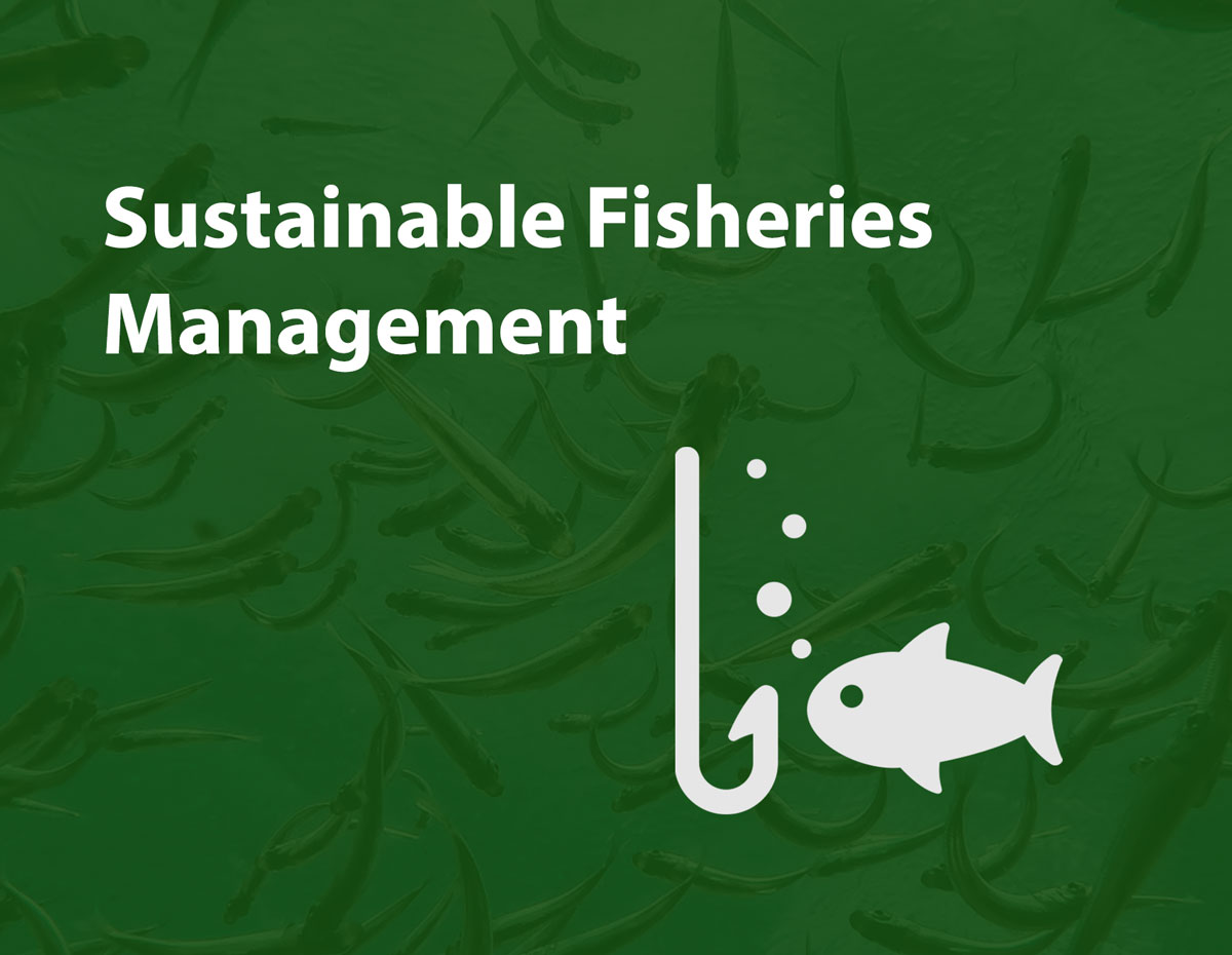 sustainable-fisheries