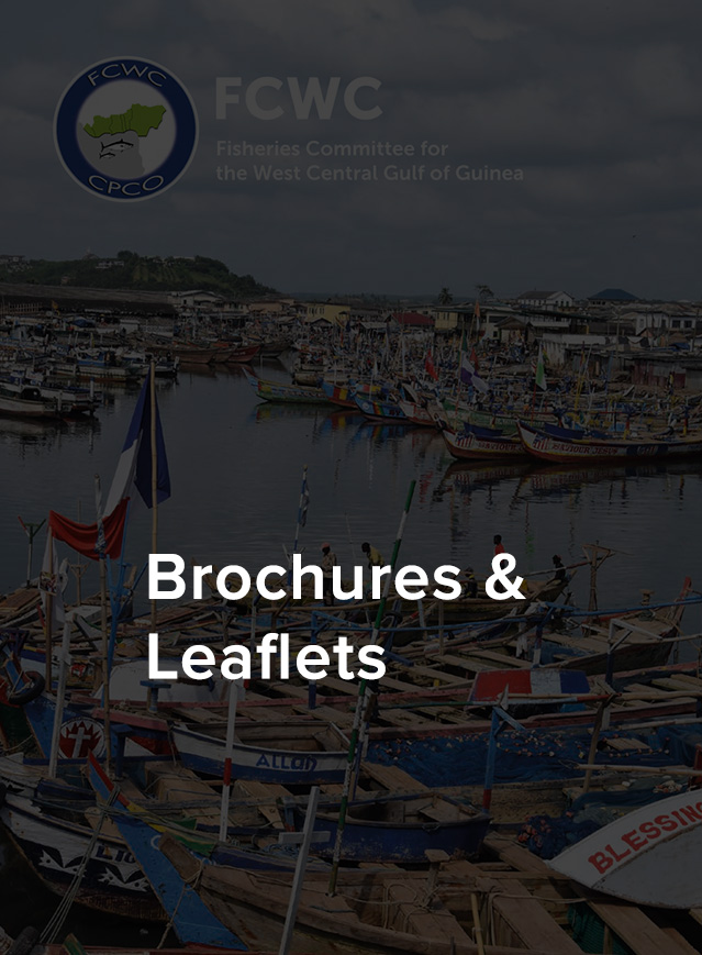 Brochure-Leaflets