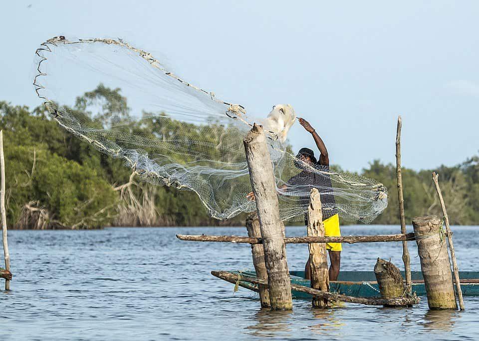Côte d'Ivoire - Pêche à lépervier - image wikipédia