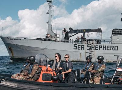 Sea sherpard