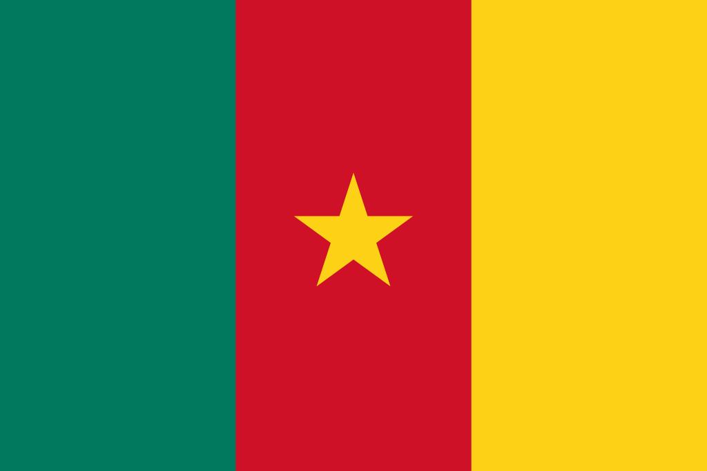 Cameroon flag big