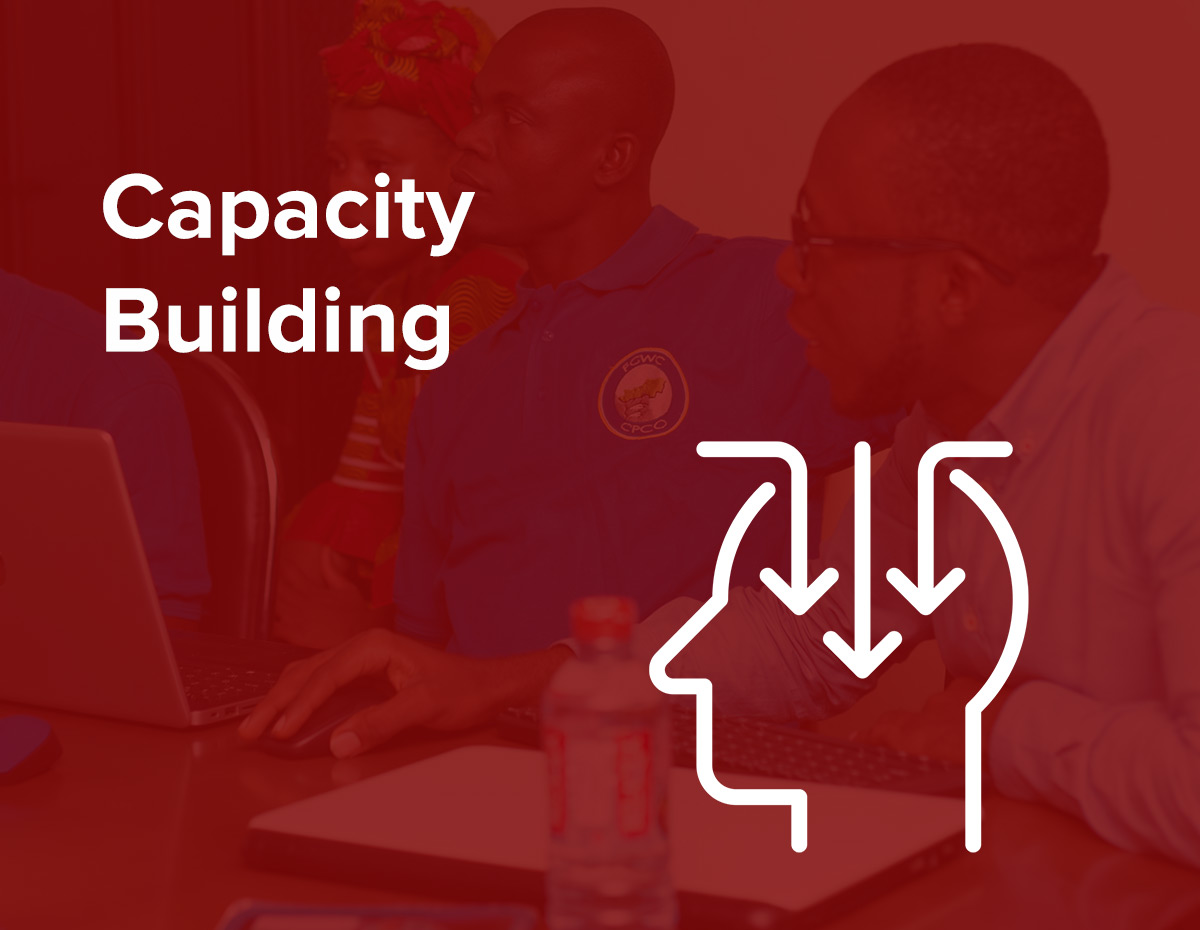 capacity-building