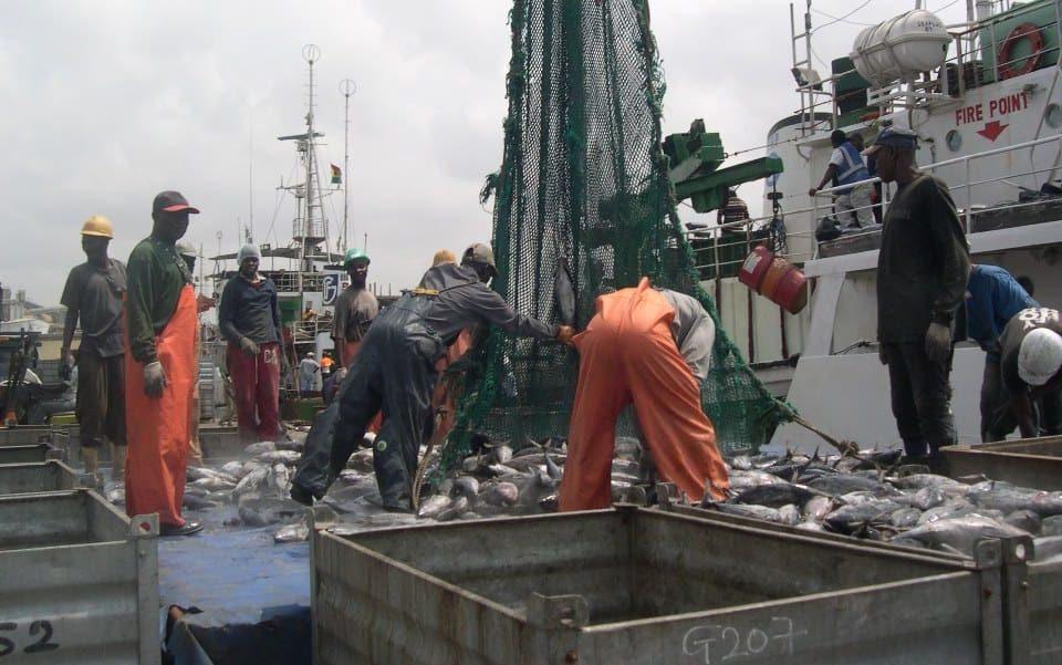 Illustration: Ghana Tema fishing harbour