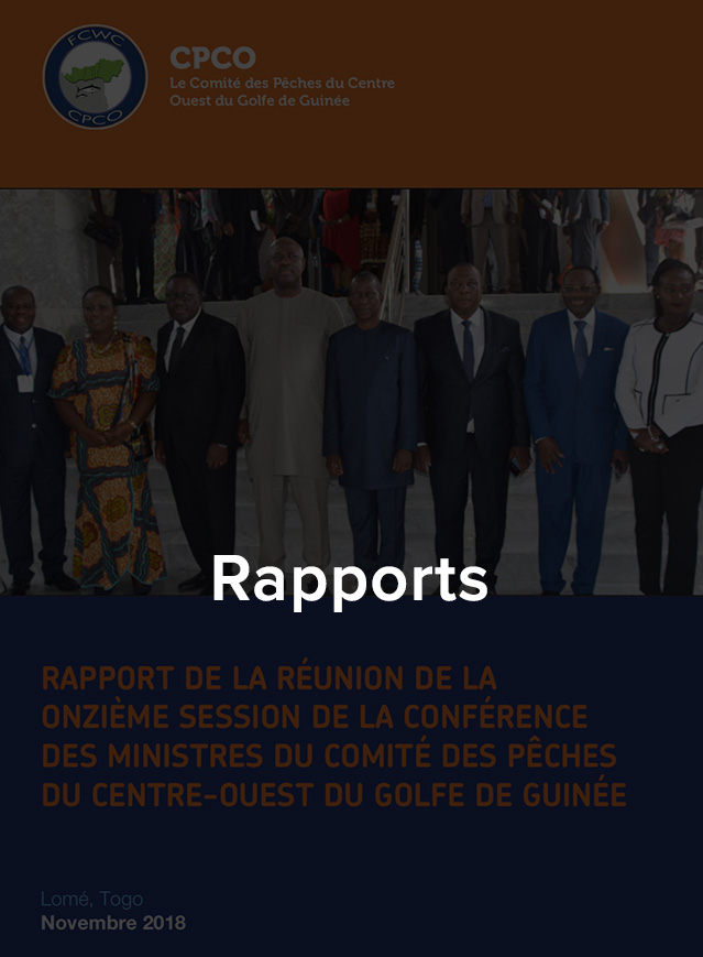 rapports-fr
