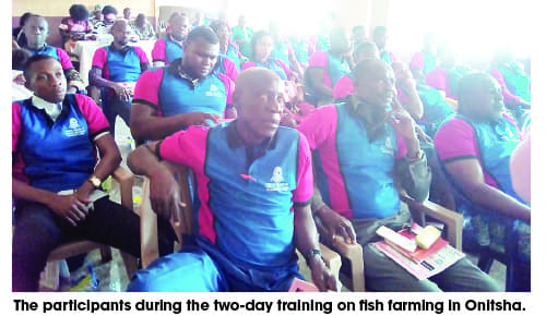 Nigeria - Fish farming training