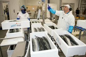 Liberia-laboratoire_certification_poisson