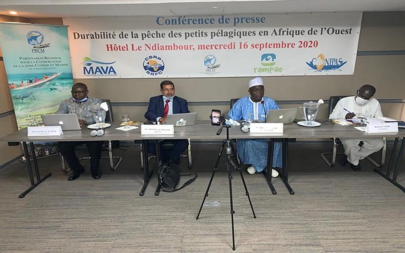 Senegal-Les-acteurs-de-la-peche-planchent-sur-la-gouvernance-des-petits-pelagiques-en-Afrique-de-louest