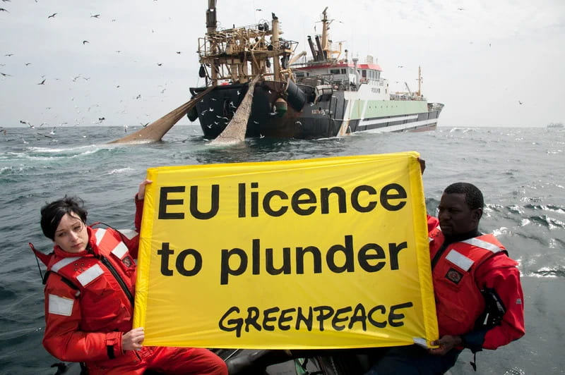 Greenpeace - EU licence to plunder
