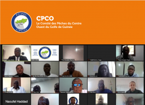 CPCO_2020_CCC_Rapport_thumb-min